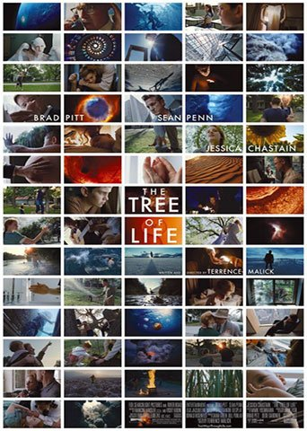 Chockstone Pictures   The Tree of Life